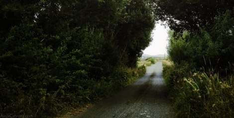 130820_irish_road