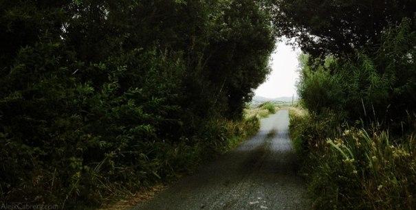 130820_irish_road