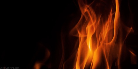 131115_foc